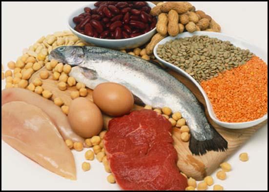 proteinas en el cuerpo