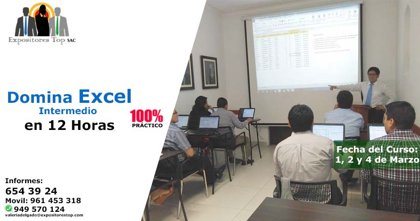 Domina Excel Intermedio 2013